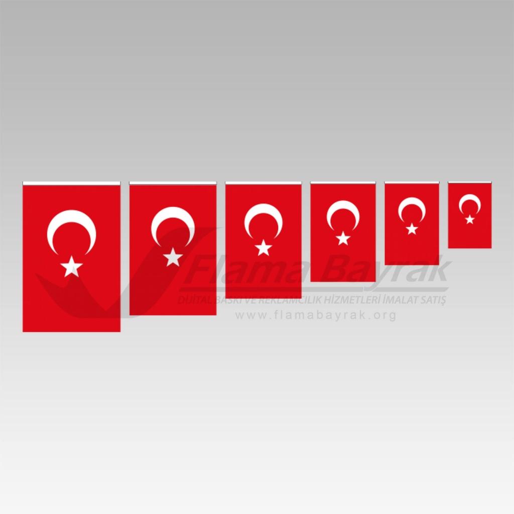 Türk Bayrağı (1)